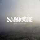 Animal Faces - Anomie
