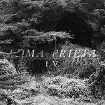 Loma Prieta - IV