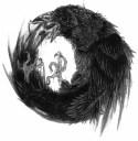 Cetascean - Crows