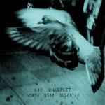 Vic Chesnutt - North Star Desester