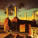 Pink Floyd - Animal