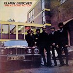 The Flamin' Groovies – Shake Some Action (1976)