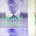 Beach Slang - Who Would Ever Want Anything So Broken?