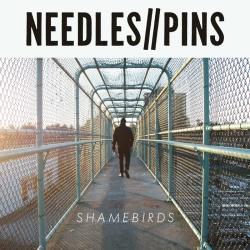 Needles//Pins - Shamebirds - Dirt Cult Records (2014)