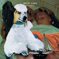 White Lung - Deep Fantasy - Domino Records (2014)